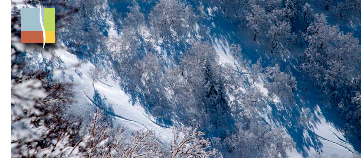backcountry winter terrain and skiers tracks